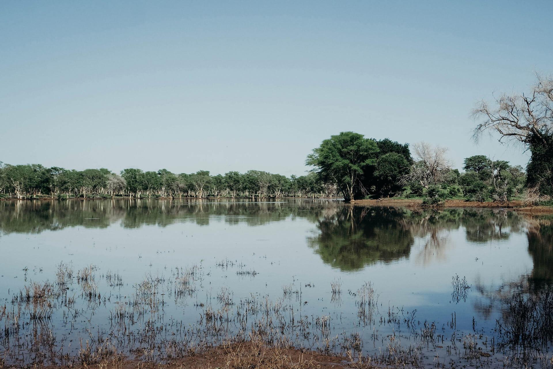 Lake in Makuleke
