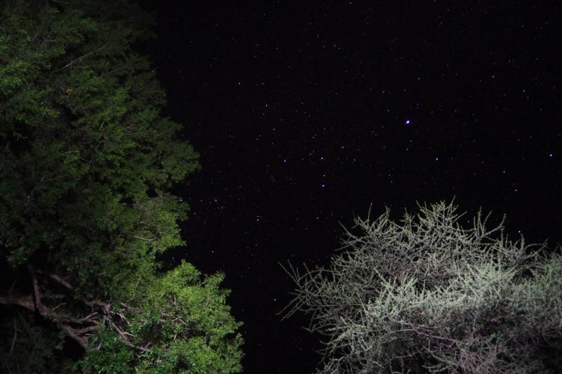 Stars, stars, stars!