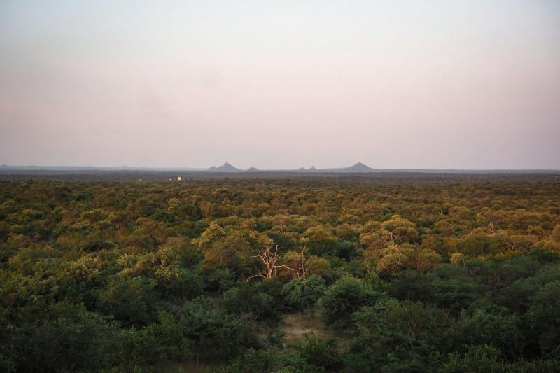 Beautiful Karongwe