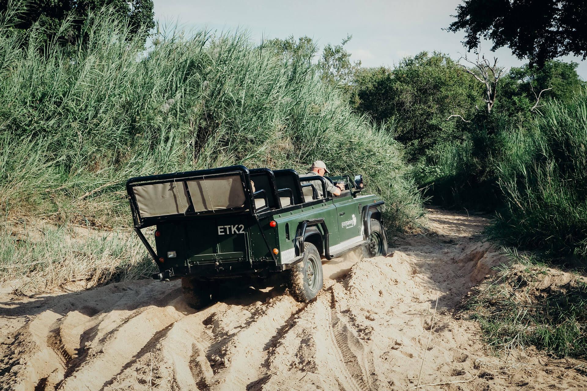 Roads of Karongwe