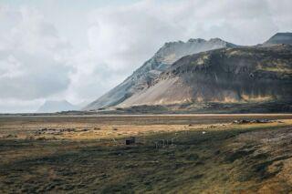Höfn, Iceland. 🇮🇸 . . . ..................................................................... #iceland #icelandtravel #icelandlove #icelandic  #naturephotography #natureshot #island #exploreiceland #natureaddict #icelandroadtrip #wilderness #raw_nordic #inspiredbyiceland #discovericeland #southiceland #ourfotoworld #travelphoto #yourshotphotographer #roamtheplanet #wanderlustmag #höfn #naturelover #natureshots #natureaddict #island #traveliceland